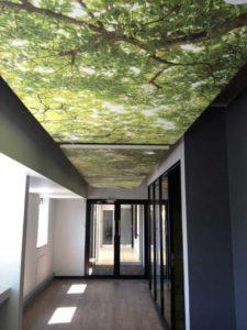 Saint-Gobain sponsored the ceiling and partition material used in the GBCSA's sustainable new offices in Rosebank.