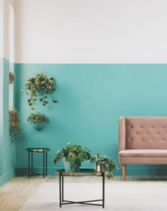 Plascon reveals their 2019 colour trends and how they'll make all the difference in the built environment.