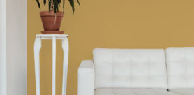 Plascon's Favourite Hue for 2021 is Golden Syrup (Y2-B1-2), a warm, sunny yellow that encapsulates positivity, confidence and joy.